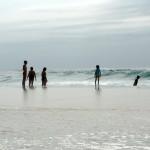 RM17 OCEAN